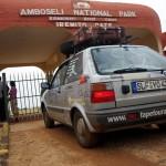 Amboseli-P8739