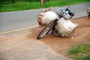 Malawi-Fahrrad-P0854