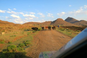 Lesotho-_0860