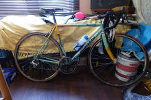 freddie-fahrrad-dsc03104